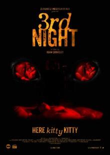 locandina del film 3RD NIGHT