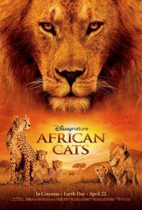 locandina del film AFRICAN CATS