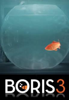 locandina del film BORIS - STAGIONE 3