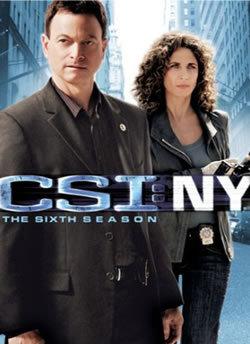 locandina del film CSI NY - STAGIONE 6
