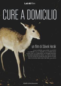 locandina del film CURE A DOMICILIO