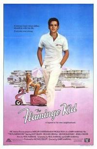 locandina del film FLAMINGO KID