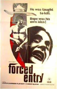 locandina del film FORCED ENTRY