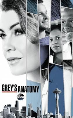 locandina del film GREY'S ANATOMY - STAGIONE 14