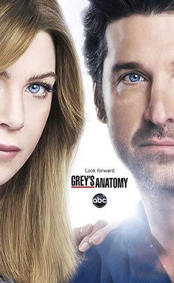 locandina del film GREY'S ANATOMY - STAGIONE 9