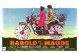 locandina del film HAROLD E MAUDE