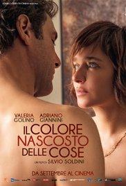 locandina del film IL COLORE NASCOSTO DELLE COSE