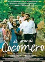 locandina del film IL GRANDE COCOMERO