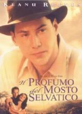 Il Profumo Del Mosto Selvatico (1994)