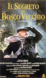 locandina del film IL SEGRETO DEL BOSCO VECCHIO