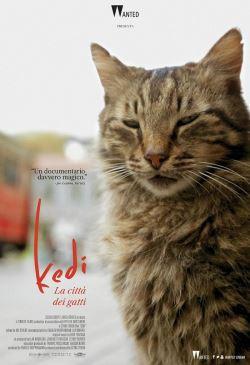 locandina del film KEDI. LA CITTA' DEI GATTI