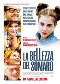 locandina del film LA BELLEZZA DEL SOMARO