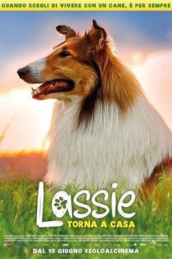 locandina del film LASSIE TORNA A CASA