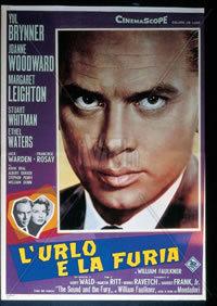 locandina del film L'URLO E LA FURIA