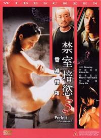 locandina del film PERFECT EDUCATION 3