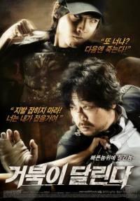 locandina del film RUNNING TURTLE
