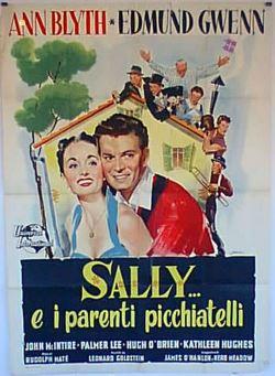 locandina del film SALLY E I PARENTI PICCHIATELLI