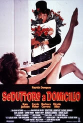 Seduttore A Domicilio (1989)