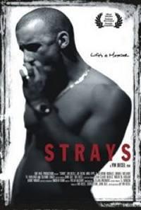 locandina del film STRAYS