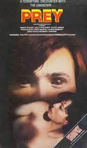 locandina del film TERRORE AD AMITYVILLE PARK