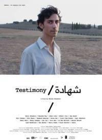 locandina del film TESTIMONY (2011)