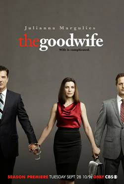 locandina del film THE GOOD WIFE - STAGIONE 2