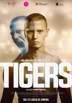 locandina del film TIGERS