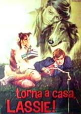locandina del film TORNA A CASA, LASSIE!