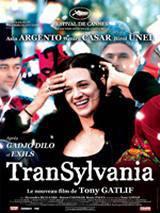locandina del film TRANSYLVANIA