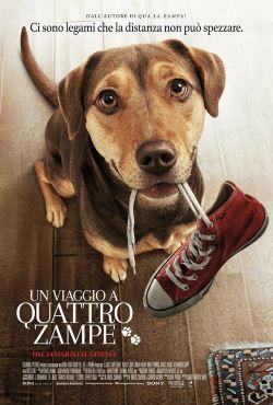 locandina del film UN VIAGGIO A QUATTRO ZAMPE