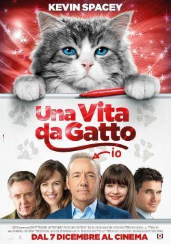 locandina del film UNA VITA DA GATTO