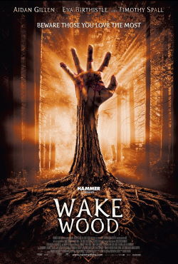 locandina del film WAKE WOOD