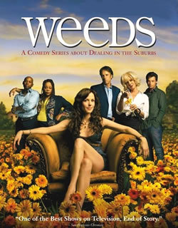 locandina del film WEEDS - STAGIONE 2