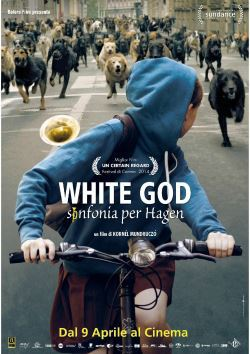 locandina del film WHITE GOD